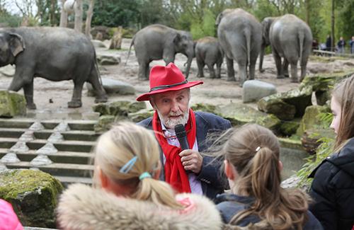 Project: leren van olifantenverdriet
